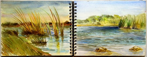 An open spread showing two moments in time at one of the small lakes west of Long Pine Key. Done during the afternoon of December 30, 2005.