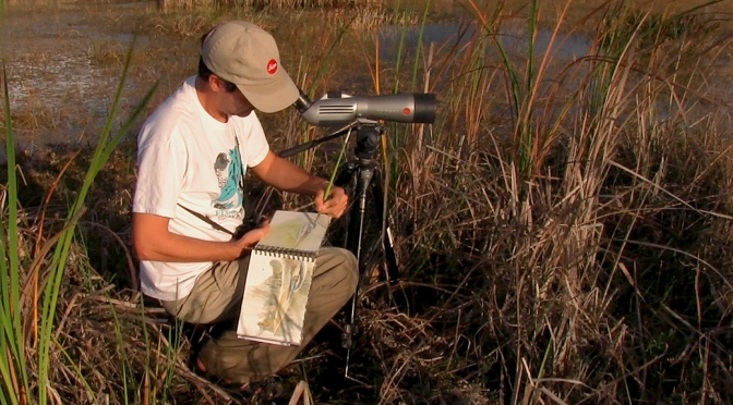 Field Sketching with Sport Optics