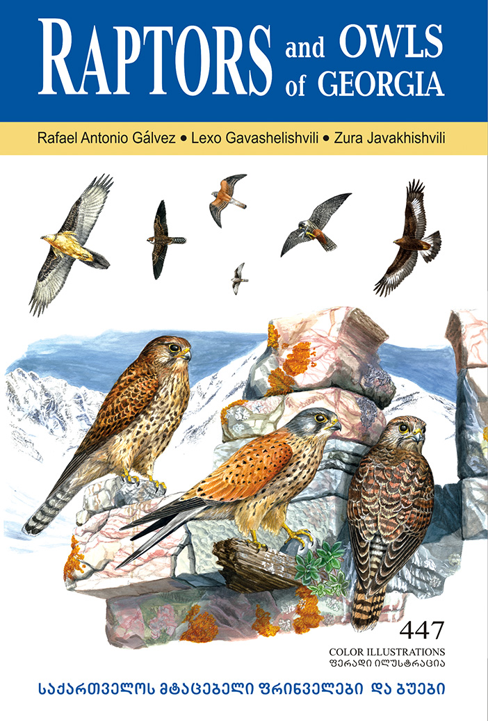 Raptors and Owls of Georgia COVER