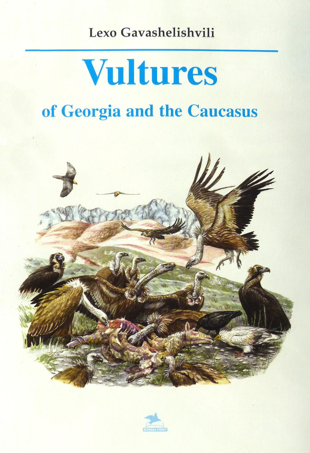 Vultures of Georgia-Caucasus